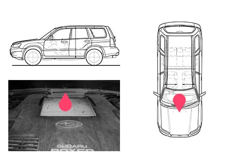 Ubicacion bastidor Subaru Forester 3gen
