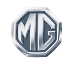 MgLogotipo